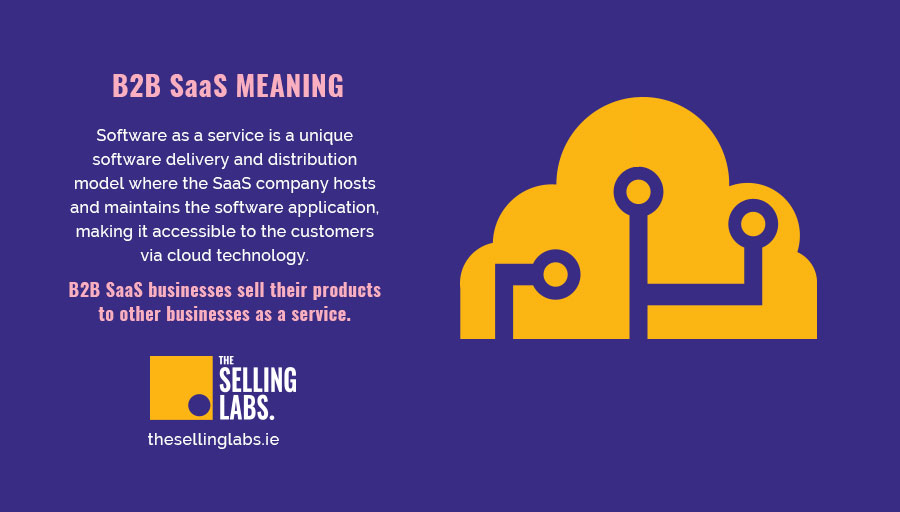 B2B Saas Meaning - Sales Consultant - Selling Labs